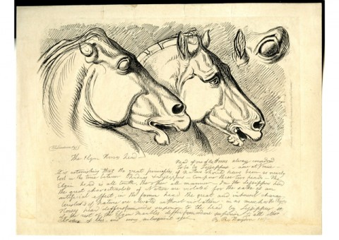 "Landseer. etching after Benjamin Haydon's 1819 drawing ""Study Of The Horse's Head From The East Pediment Of The Parthenon And Of The Head Of One Of The Horses Of St Mark's Basilica, Venice."""