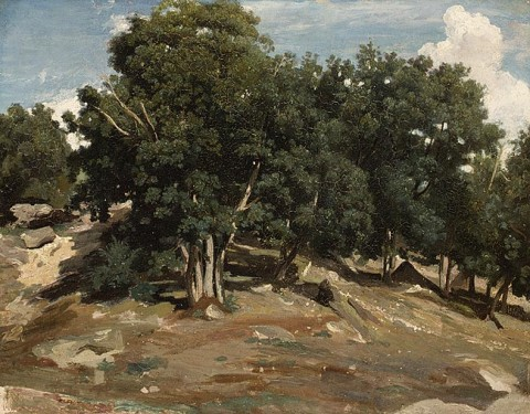 Camille Corot, Fontainebleau- Oak Trees at Bas-Bréau, 1832 or 1833. Oil on paper laid down on wood; 15 5/8 x 19 1/2 in. (39.7 x 49.5 cm). Metropolitan Museum of Art