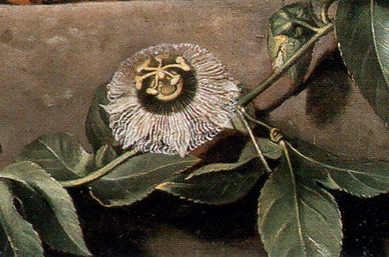"""Albert Eckhout, detail from """"Still Life with Watermelons, Pineapple and Other Fruit,"""" 1640"""