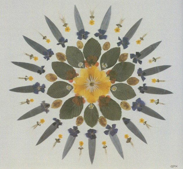 Grace Kelly, pressed flowers in a geometric pattern with protea leaves, periwinkle, viola, daisies, and a yellow daffodil, n.d.