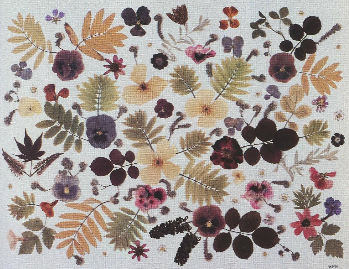 Grace Kelly's Pressed Flowers